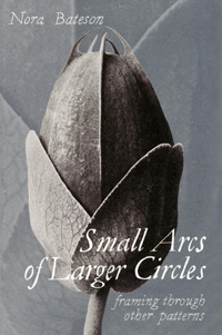 a-Nora-SmallArcs-cover-sm.jpg